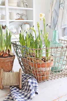 Love the flowers in the crate and the use of the paper to hide the potting soil.