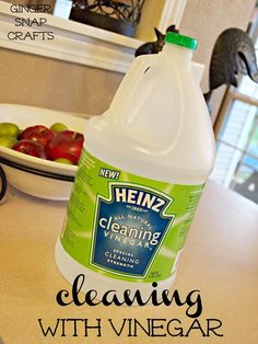 cleaning with vinegar (tips & tricks)