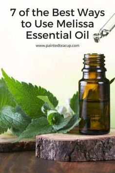 I personally LOVE melissa essential oil! Although it is more expensive than others, it's one I love thanks to its many benefits which are shared here! Melissa Essential Oil, Basil Essential Oil, Essential Oil Blends, Doterra Melissa, Melissa Oil, Esential Oils, How To Calm Nerves, Nail Polish, Diffuser Recipes