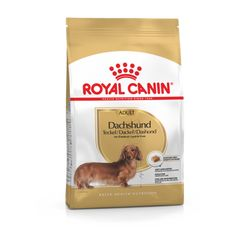 Dachshund adult Pet Online, Omega 3, Les Croquettes, 10 Month Olds, Bone And Joint, Mini Dachshund, Muscle Tone, Dry Dog Food, Dog Feeding