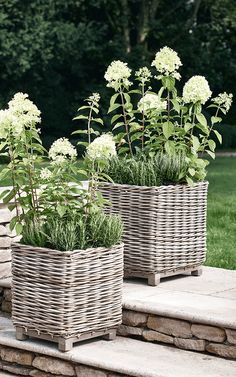 Two Square Rattan Planters - Copper, Zinc & Concrete Planters & Plant Pots - Garden Trough Planters & Plant Pots - Outdoor Living Rattan Planters, Trough Planters, Basket Planters, Outdoor Planters, Concrete Planters, Outdoor Gardens, Planter Ideas, Garden Troughs, Garden Planters