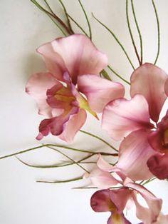 Sugar Flower www.decorazionidolci.it Idee e strumenti per il #cakedesign