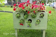 Liisan kotona: Erilainen kukkalaatikko
