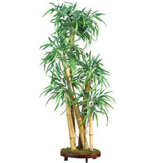 Found it at Wayfair - Chinese Style Bamboo Tree in Planter