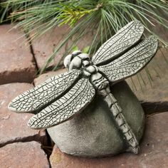 Bring an eye-catching accessory to your garden with the Campania International Dragonfly Cast Stone Garden Statue . This larger-than-life dragonfly gives. Stone Garden Statues, Outdoor Statues, Garden Fountains, Garden Stones, Ceramic Animals, Ceramic Art, Pottery Animals, Clay Projects, Clay Crafts