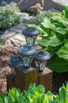 Super cute idea for outdoor solar garden lights! DiY Cedar Cube Landscape Lights - TheNavagePatch.com