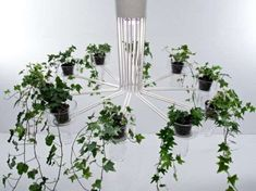 Flowerpot Chandeliers - 'Flora' Lighting Installation Elevates Your Indoor Garden (GALLERY)