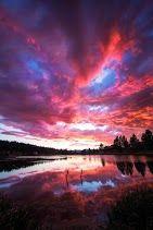 Like My Heart Was On Fire Truckee, California ©Karen Hutton  www.karenhuttonphotography.com