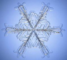 The Snowflake: Winter's Secret Beauty Christmas Humor, All Things Christmas, Winter Christmas, Patterns In Nature, Textures Patterns, Snowflake Pictures, Crystal Snowflakes, Tiny World, Snow And Ice
