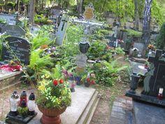 GROBONET 2.2 - wyszukiwarka osób pochowanych - Cmentarze Komunalne w Gdyni
