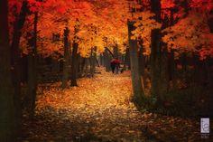 Walk in pantone tones by Tatiana Avdjiev - Photo 17289175 - 500px