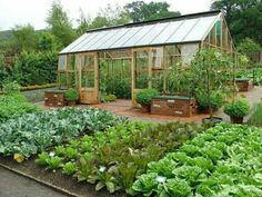 Pretty garden with open greenhouse and work area