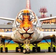 "Rossiya Airlines Boeing 747-446 in the ""Amur Tiger Conservation"" livery"