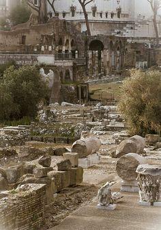 Foro di Augusto, Rome