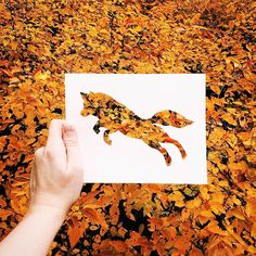 Des silhouettes d'animaux découpées dans une simple feuille de papier, puis superposées dans la nature, une jolie série réalisée par l'artiste Nikolai To