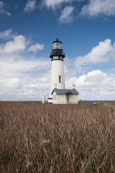 The Yaquina Head Lighthouse near Newport is one of the most beautiful we've ever seen. There is a cool museum and you can tide pool as well. Newport Oregon, Tide Pools, Lighthouses, All Over The World, Feathers, Most Beautiful, Travel Photography, United States, Museum