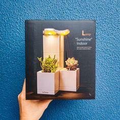 LeGrow | LED Lamp | jomomail – jomotech.blog Led Lamp, Indoor, Blog, Vases, Garden, Interiors, Interior, Blogging