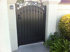 Residential Wrought Iron Privacy Gate 3