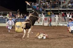 The Rocky Mountain Bull Bash is happening over Labor Day Weekend in Steamboat Springs!
