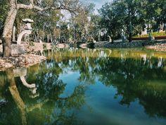 Desfrute cada momento com a magia deste lago.