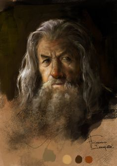 Gandalf by fernandoissamo