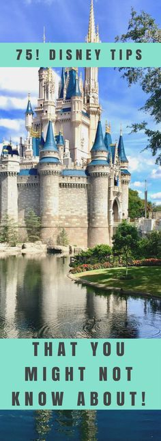 Disney World Tips &