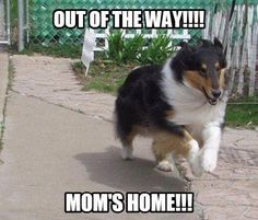 Out of the Way! Mom's Home!!!