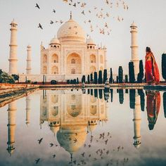 Taj Mahal, Agra, India When your first into the Taj Mahal at sunrise...@beautifuldestinations does it right. #thebirdsmaybefake