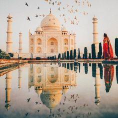 Taj Mahal, Agra, India When your first into the Taj Mahal at sunrise...@beautifuldestinations does it right. #thebirdsmaybefake