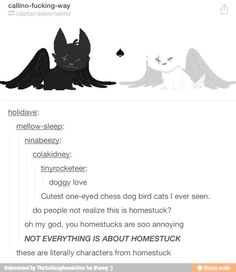 Today on 'They didn't know it was homestuck'