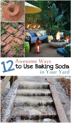 12 Awesome ways to use baking soda in the garden- tips and tricks to use baking soda to make the most of your yard.