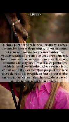 I also started my Holsteiner gelding on Equine Mega Gain and in just… – Art Of Equitation Just Smile Quotes, Good Girl Quotes, Gossip Girl Quotes, Feeling Happy Quotes, My Horse, Horse Girl, Short Nature Quotes, True Friendship Quotes, Equestrian Quotes