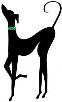 Texas Italian Greyhound Rescue. Aria is a rescue!!!