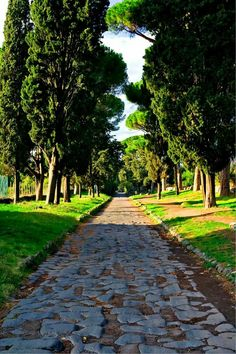 2300-year-old Roman road in Rome,Italy.   🌍