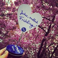 We just  spring! One of the best things about it is the variety of blossoms and flowers all over the streets. Have fun discovering!  #NIVEA #beauty #cosmetics #love #pretty #beautiful #pflege