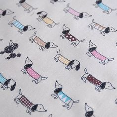 wiener dog fabric funfun!