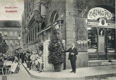 1904. A Mátyás Pince a megnyitásakor