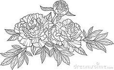 realistic graphic three peony flower tattoo