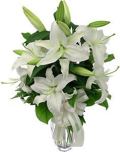 casablanca lillies