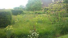 This meadow is EVERYHING.   http://gardendesigneye.com/2013/07/03/garden-visit-bury-court/