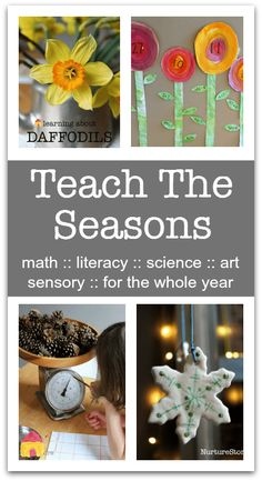 A complete resource to Teach The Seasons :: seasonal activities for the whole year Seasons Activities, September Activities, Weather Activities, Spring Activities, Learning Weather, Preschool Science, Science Activities, Activities For Kids, Science Classroom