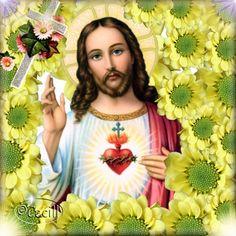 JUNIO MES DEL SAGRADO CORAZON DE JESUS: Nardo del 14 de Junio ¡Oh Sagrado Corazón, que amas el silencio!