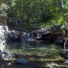Holy Jim trails/waterfall: Cleveland Nat'l Forest, Trabuco Canyon, 92679; 1.5 mi to 20 ft waterfall; or add 7mi to Santiago peak 4200 elev http://www.caopenspace.org/holyjim.html
