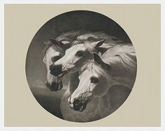 The Pharaoh's Horses The story of Pharaoh's Horses begins with the puzzling existence of two nearly identical paintings. One ver...