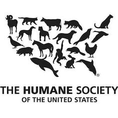 Be active with the Humane Society of the US!