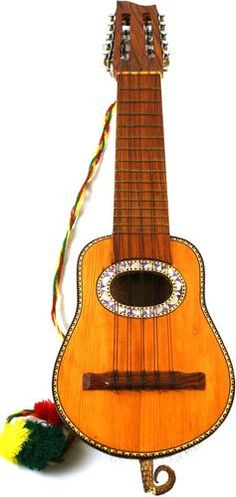 Vintage Armadillo Charango Ukulele 10 Strings w/Soft Case.  Because of the coarse hair that sprouts out between the Armadillo's plates, to help keep out parasites, it is inadvisable to play this instrument shirtless cuz it feels kinda disgusting.