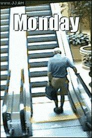 Montag.. | Lustige Bilder, Sprüche, Witze, echt lustig