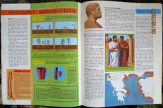 Knowledge Magazine NO154 Switzerland Economy THE Bovidae Aristides 1965   eBay
