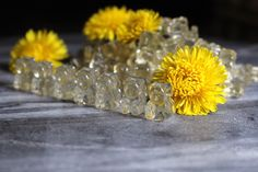 Dandelion gummy bears are surprisingly easy to make, and it's a project that even the Beef Gelatin, Gelatin Recipes, Cinnamon Raisin Bread, Dandelion Recipes, Honey Syrup, Natural Honey, Grass Fed Beef, Gummy Bears, Christmas Cookies
