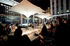 The Top 12 Rooftop Bars in Chicago